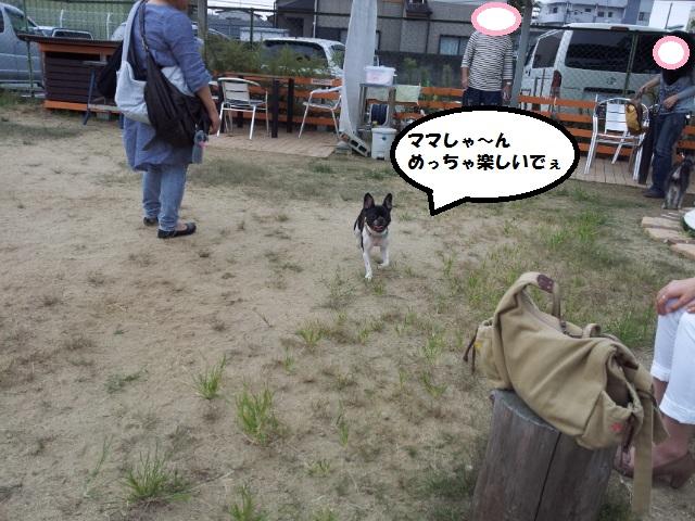 20120929_134005.jpg