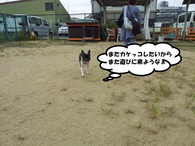 20120929_134055.jpg