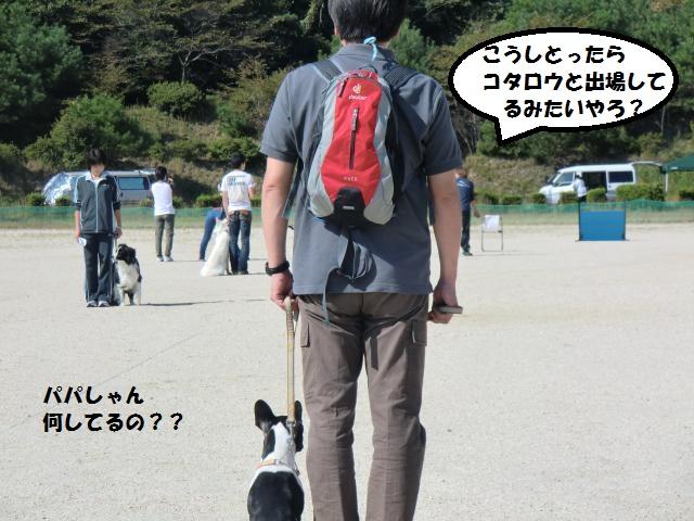 CIMG5426_convert_20121008191225.jpg