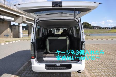 DSC_0341_20110311052718.jpg