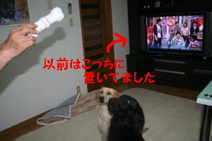 IMG_9723.jpg