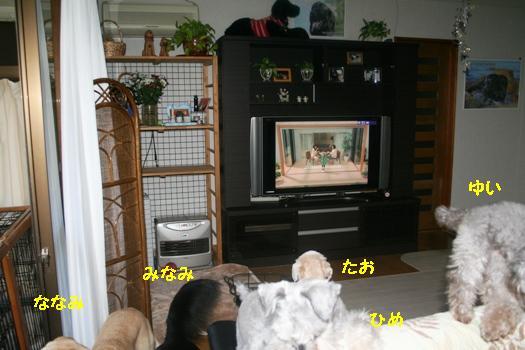 IMG_9881.jpg