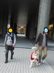 015_20111206222347.jpg