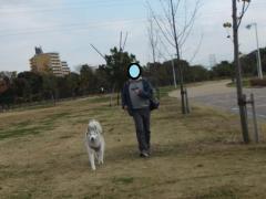 015_20111210211434.jpg