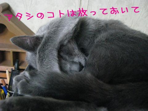009_Rのコピー