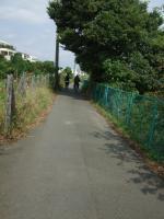 金目川CR1