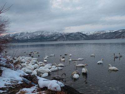 2012年元日の屈斜路湖