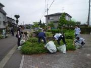 20110612ホタルロード清掃活動