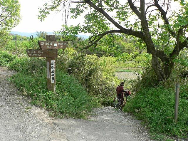 山之辺の道10坂道