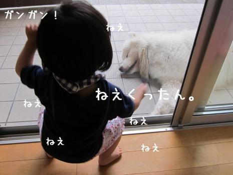20110828_12.jpg