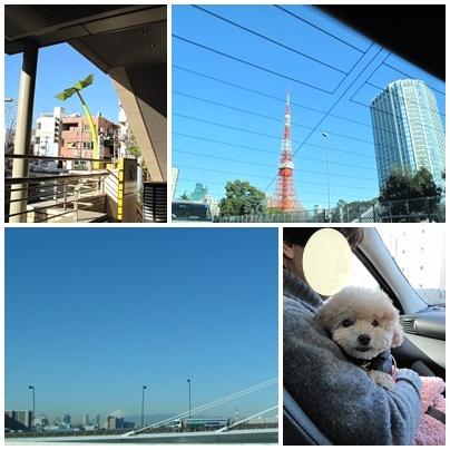 湘南ツアーへGO!