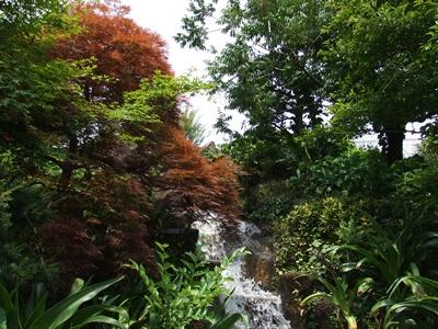 西郷山公園の滝