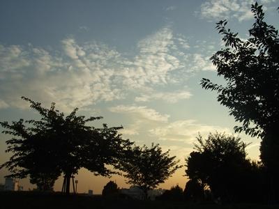 西郷山公園の夕方