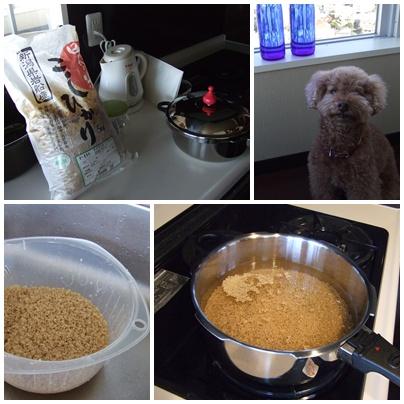 玄米ご飯炊き方講座