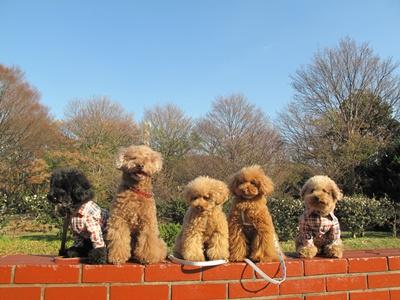 駒沢公園 記念写真