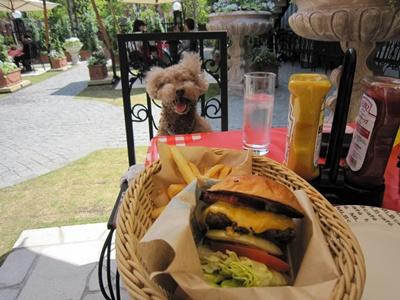 MLB café TOKYO カフェスペース  ハンバーガー