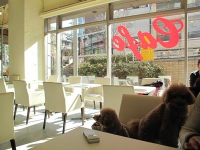ribbon cafe(リボンカフェ)  店内