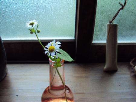 小部屋 花
