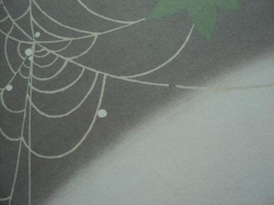 蜘蛛の巣 水滴