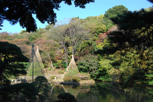 photo200911_09.jpg