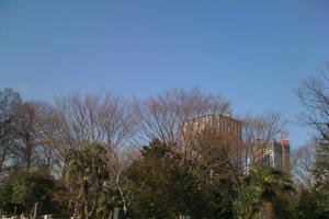 photo200912_03.jpg