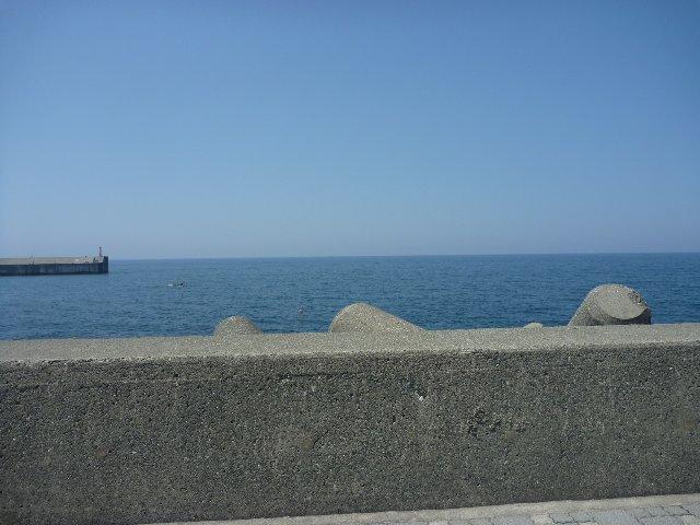 海の見える