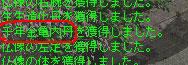 11.21箱から亀