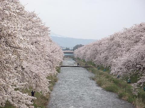 hunagawa0418-4.jpg