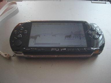 PSP0121-1