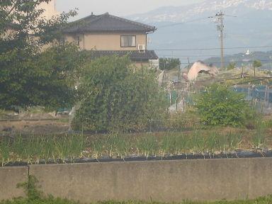 toki0606-3