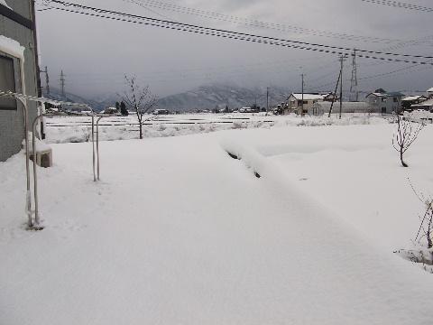 yuki1226-1.jpg