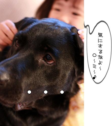IMG_6839.jpg
