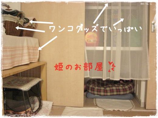 2010217部屋