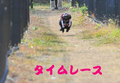 タイムレース1