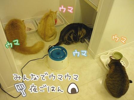 2010-03-25-03.jpg