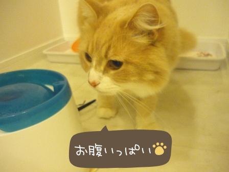 2010-03-25-07.jpg