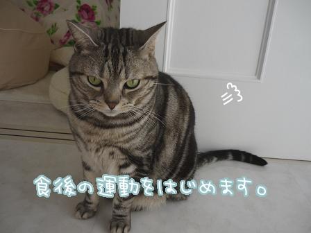 2010-03-27-04.jpg