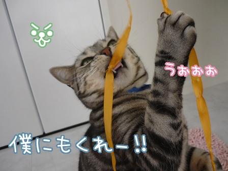 2010-03-27-08.jpg