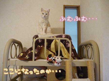 2010-03-28-01.jpg