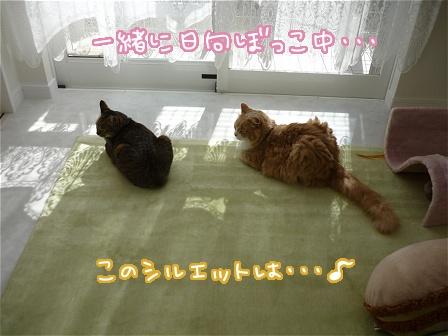 2010-04-08-01.jpg