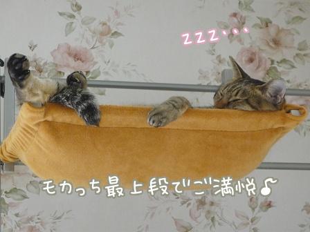 2010-10-13-01.jpg