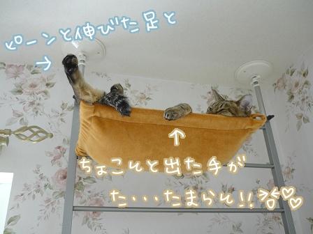 2010-10-13-02.jpg