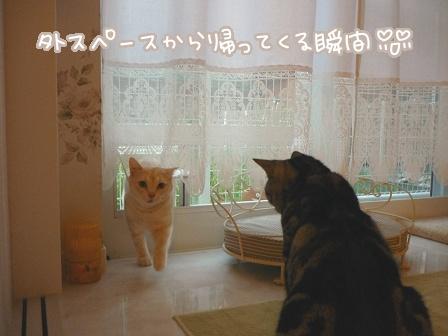 2010-10-20-01.jpg