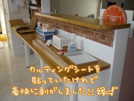 2011-02-01-01.jpg