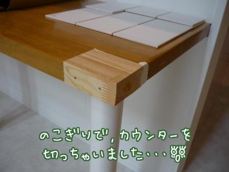 2011-02-01-03.jpg
