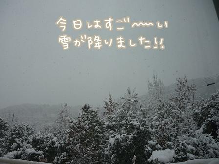 2011-02-14-01.jpg