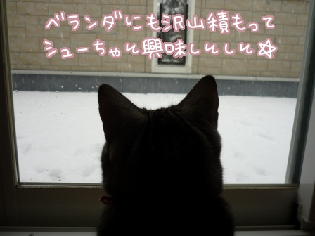 2011-02-14-02.jpg