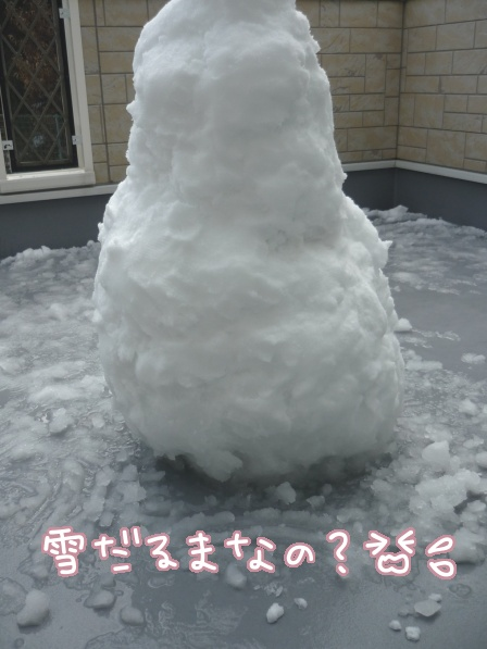 2011-02-15-01.jpg
