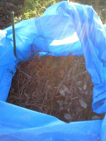 落ち葉堆肥作り