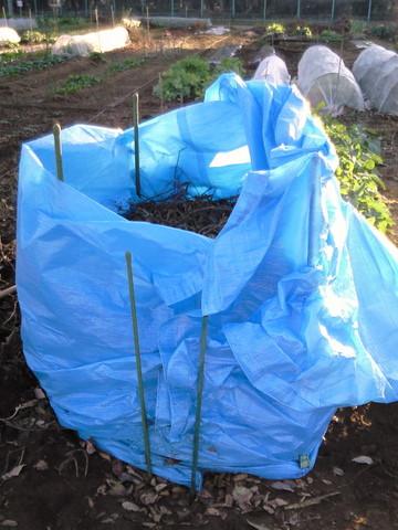 落ち葉堆肥作り2